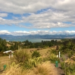 Tasman Bay toward Nelson, from Pine Hill Road