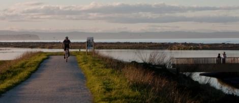 Photo courtesy of Hawkes Bay Tourism (www.hawkesbaynz.com)