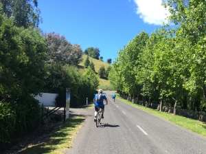 Riding Tukituki Hills Road